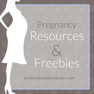 prideandjoybabyplanners _maternity_store_concierge_freebies_button